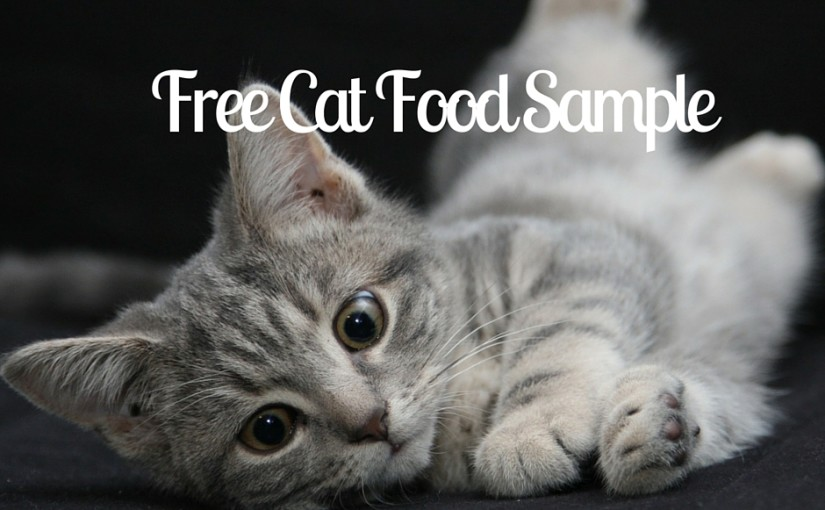 SampleThat post template cat food