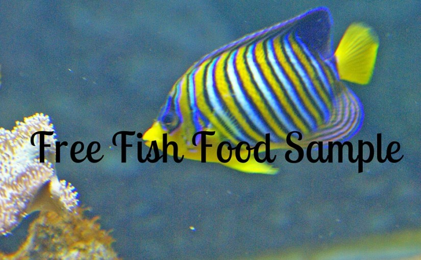 SampleThat post template fish food