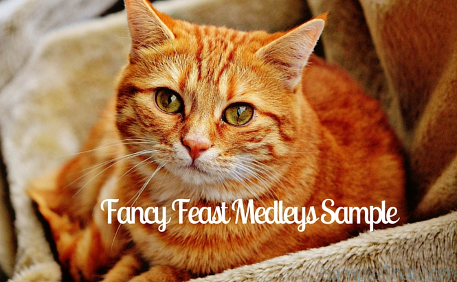 Fancy Feast Medleys Sample