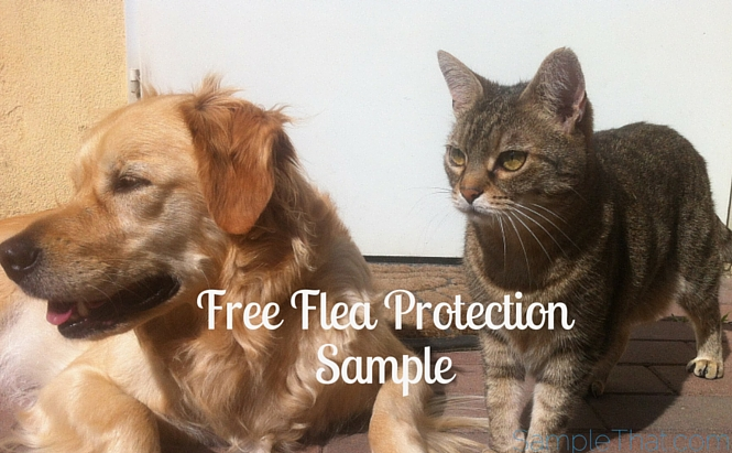 Free Flea Protection Sample
