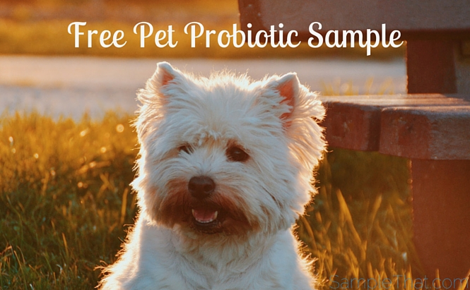 Free Pet Probiotic Sample